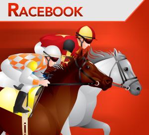 1vice Racebook